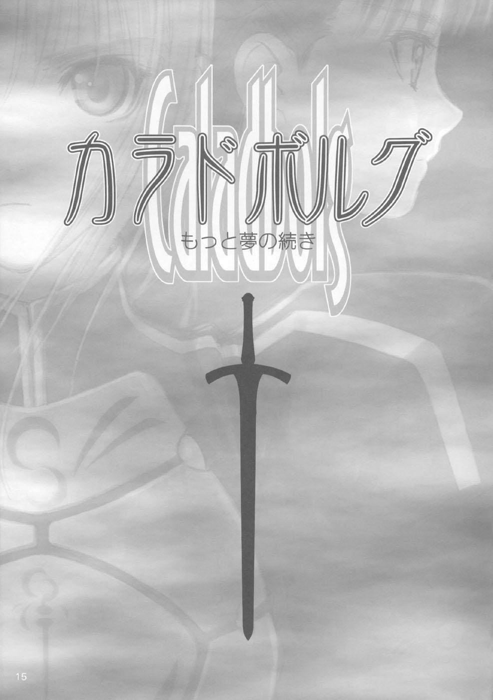 DoujinReader.com Caladbolg Motto Yume no T…