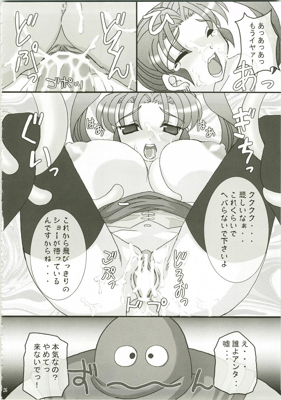DoujinReader.com Tokumori Parupunte DQ Soushuuhen_026